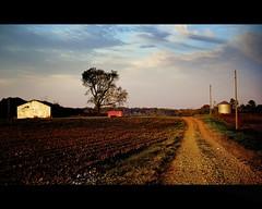Morning Light Fall Harvest (lee.mccain.photorama) Tags: sunrise landscape alabama allrightsreserved greenbriar limestonecounty leemccain nikond700 aperture30 nophotocanbeusedwithoutmywrittenpermission