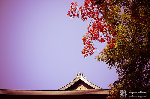 Fuji_X100_beauty_29