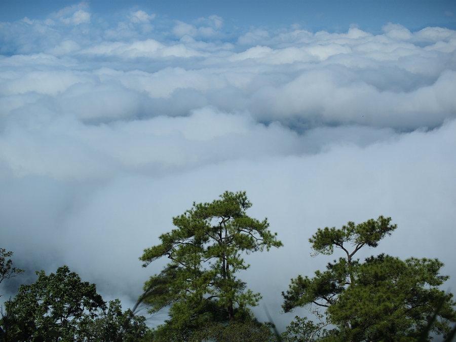 Clouds & Mountains. Doi Pui Mae Hong Son