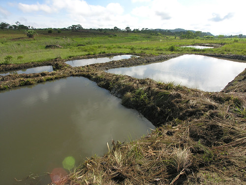 Aquaculture Fish pond in Matiti Association, Maleme village, Macanga District, Mozambique. Photo by Peter Fredenburg, 2008