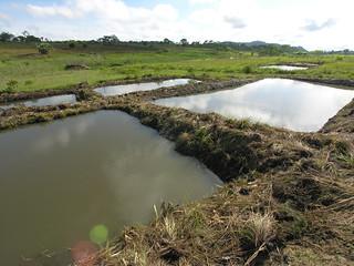 Aquaculture Fish pond in Matiti Association, Maleme village, Macanga District, Mozambique. Photo by Peter Fredenburg, 2008