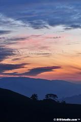 Dawn (2121studio) Tags: nature sunrise dawn nikon ali malaysia indah cameronhighlands kuantan alam malaysianphotographer drali sgpalasteaplantation 2121studio kuantanphotographer pahangphotographer ciptaanallahswt 0139342121 nubleebinshamsubahar