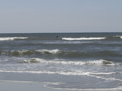 beach at Chincoteague Park (janetzep65) Tags: lighthouse lilly millcreek chincoteague tuxy fenwickmines nitrowv marchapril2012