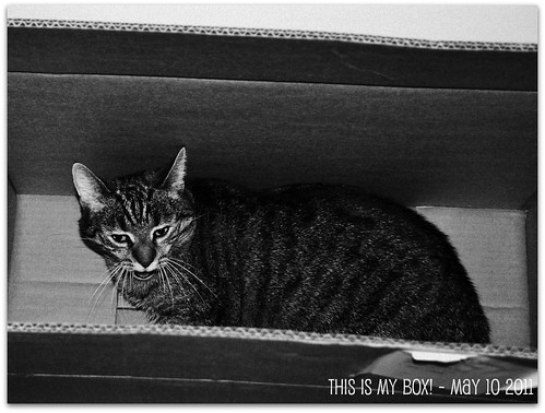 This is ma box! - May 10 2011