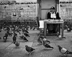 waiting for some pigeons-feeder // new mosque, istanbul (pamela ross) Tags: street old blackandwhite bw man pen fly dove pigeons olympus istanbul trkei sw feed ep1 eminn yenicamii newmosque turkye neuemoschee istanbullovers
