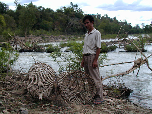 Lee traps at Dtat Po-Hoo Sahong, Don Khong, Laos. Photo by Eric Baran, 2000
