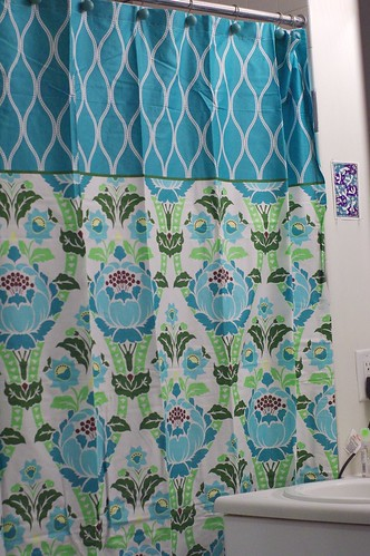 amy butler shower curtain