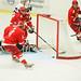 Fotosöndag - Ishockey. Linden Hockey - FOC Farsta