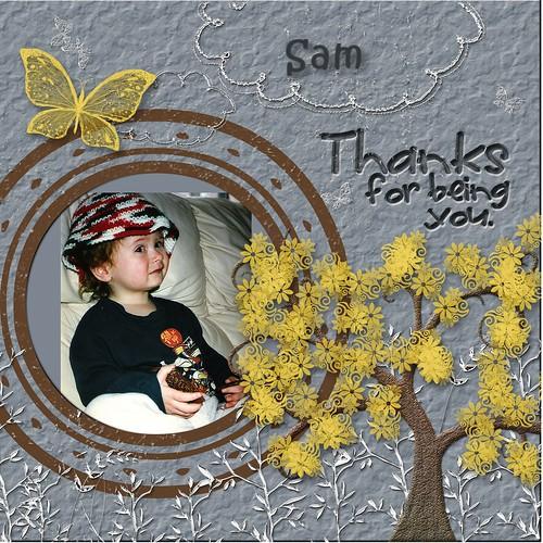 Sam-003