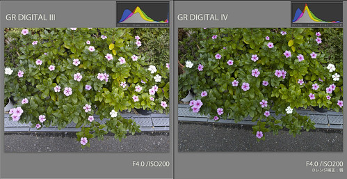 GRD3/GRD4 Test Shots 2-1