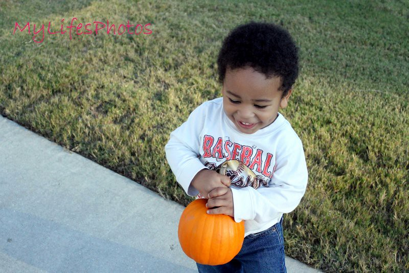 pookah and the pumkin