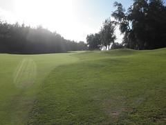 Turtle Bay Colf Course 367