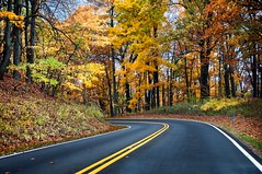 Skyline Drive - Milepost 72 (Sky Noir) Tags: road park travel autumn fall beautiful leaves skyline point drive virginia leaf highway scenery colorful driving scenic national va shenandoah distance vanishing distant skynoir bybilldickinsonskynoircom
