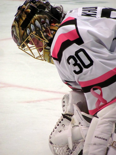 [300/365] Pink in the Rink by goaliej54