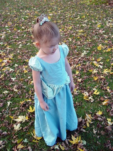 Cinderella, view 1