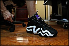WDYWT (Never Wear Them) Tags: white black star 1 crazy all purple 8 adidas allstar i kb8