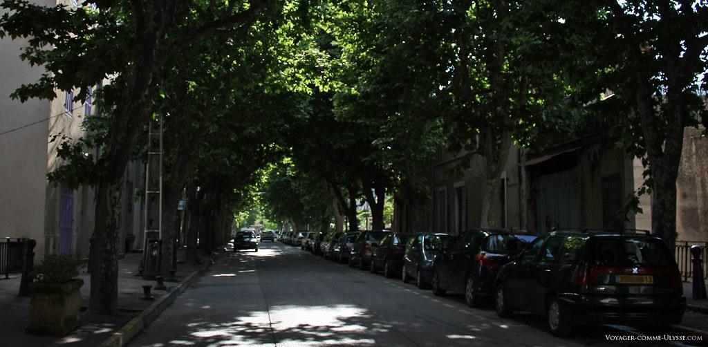 Grande rue bordée de platanes, l'avenue Célestin Barthélémy vous fait rentrer dans le village. C'est ici qu'a lieu chaque premier week end de Septembre le Salon des Ecrivains de Fuveau.