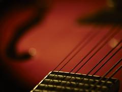 mandolin (fimonfabre) Tags: orange pentax mandolin instrument acoustic string clair k10 cordes oscure mandoline