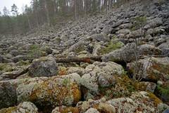 Jppiln Kivikuru Pieksmki 11 (Timo Heinonen) Tags: nature iceage finland rockycanyon easternfinland