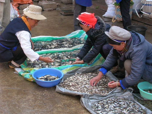 Women selling fish in the weekly market in He Qing Yunnan, China. Photo by Hong Meen Chee, 2009