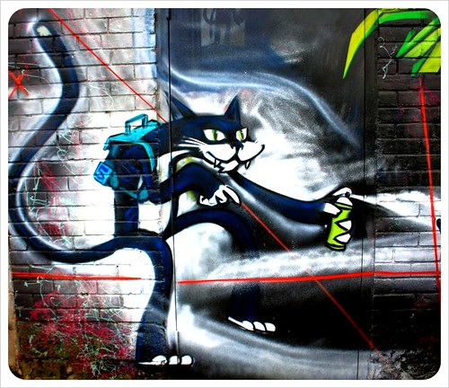 toronto graffiti cat