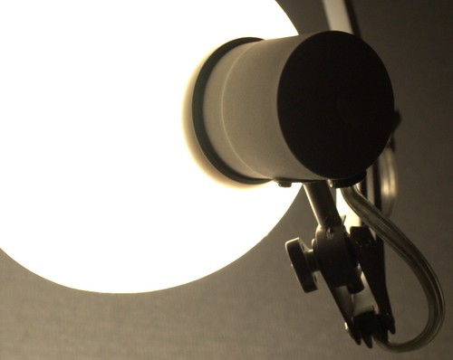 Day 320: Light, Camera, No Action