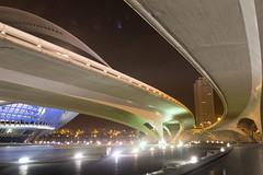 La curva en la C.A.C. (Fotomundo de Toni) Tags: nocturna perspectiva curva ciudaddelasartesylasciencias