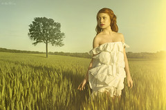 Golden Illusion (Ben Heine) Tags: trees light red sky orange woman inspiration detail tree art nature girl beauty field mystery painting landscape asian photography hope gold freedom licht countryside search model eyes thought poem vietnamese glow breast peace hand dress belgium belgique robe lumire or horizon champs free belief sharp arbres precious question expressive torso behind shoulders quest redhair yesterday libre pense rousse yellowfilter asiatique derrire bl vrij mystre paules petersquinn nettet benheine anawesomeshot braives samsungimaging carolinemadison fairytaleheart22 aboveandbeyondlevel1 goldenillusion