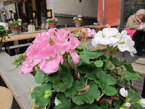 Tukholman Vanhan kaupungin kahvilassa by Anna Amnell