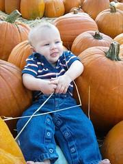 311767_10150348899002002_513762001_8096108_177610776_n (Honey Bear2009) Tags: pumpkin patch kayce