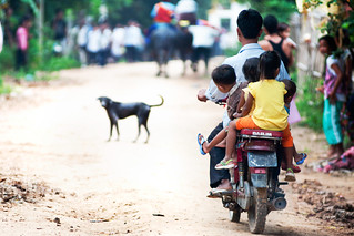 Children on motor trying to get a better view of racing buffaloes