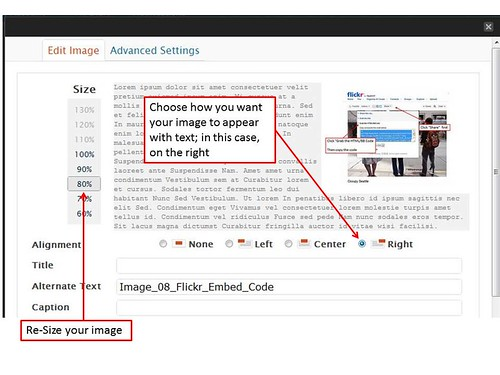 Image_12_ImageOptions