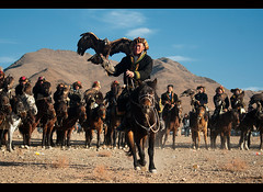 Kazakh eagle hunters and their golden eagles in the Altai Region of Bayan-Ölgii in Western Mongolia (jitenshaman) Tags: travel horse bird sport festival asian costume asia eagle mongolia raptor destination hunter tradition oriental orient kazakh horseback steppe falconry mongolian aquilachrysaetos altai eaglehunter bayanulgii worldlocations bayanolgii bayanölgii