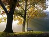 Golden October (RainerSchuetz) Tags: park trees mist bench parkbench idream aboveandbeyondlevel1 aboveandbeyondlevel2 aboveandbeyondlevel3