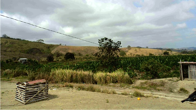 ecuador-agricultural-real estate