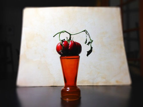 devilsfood by Nature Morte