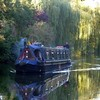 narrowboat  .. Explore # 33 oct 26 (jjamv) Tags: uk bridge flowers autumn trees sunset england sky mountain reflection tree london nature water field bluebells alberi forest woodland river landscape boat canal swan lock path explorer natura explore swans sentiero barge narrowboat hertfordshire springtime canalboat grandunioncanal bosco herts hemelhempstead boxmoor apsley chilternhills bulbourne sentieri explored riverbulbourne rivergade 100commentgroup jjamv vpu1 julesvtravel vigilantphotographersunite vpu2 vpu3 vpu4 vpu5 vpu6 vpu7 vpu8 vpu9 vpu10 vpu20xl10awards juliusvloothuis