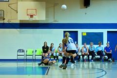11-10 WCS volleyball - WCS Crusaders vs Ashland -  112 (gus_estrella) Tags: favorite sport zeiss october sony highschool tuesday volleyball alpha ssm zoomlens 2011 whitinsville a700 views2650 sonylens dslra700 sal2470z rated3 cz2480 accesspublic 2470mmf28zassm whitinsvillechristianschool wcscrusaders addgrp:Zeiss=false ashlandclockers addgrp:Sports=true addgrp:A700=false addgrp:Volleyball=false