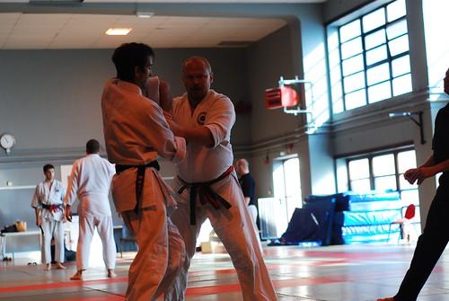 6299415365 e251c333c5 London & Hove Shodokan Aikido Festival 2011