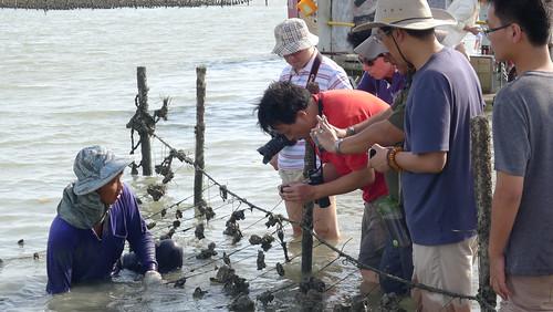 六年來,協會持續經營兩岸交流,帶領中國環境媒體及環境NGO走訪台灣各地,汲取環保行動經驗。