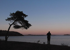 Stockholm archipelago (Per Ola Wiberg ~ Powi) Tags: oktober nature showroom archipelago 2011 stockholmarchipelago digitalcameraclub cherryontop stockholmsskrgrd supershot denes wonderfulphotos naturesgallery diamondheart vivalavida excapture natureiswonderful shiningstar crazyaboutnature discoveryphotos colorsofthesoul naturescreations glhavsbad zensationalworld visionaryartsgallery naturesribbon zodiacawards moongoddessawards hellofriend naturespoetry~~ nasirselitephotosgallery thesoulofourthoughts