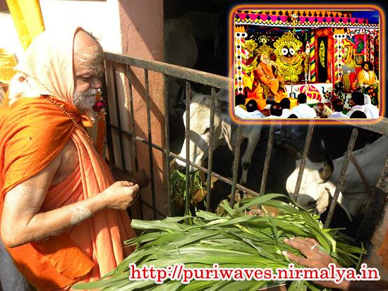 Gopastami celebrated at Puri