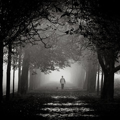 fog III (thombe77) Tags: autumn people bw dog white black fall fog canon germany square deutschland eos nebel herbst hund magdeburg sw weiss schwarz quadrat quadratisch 400d a2f24