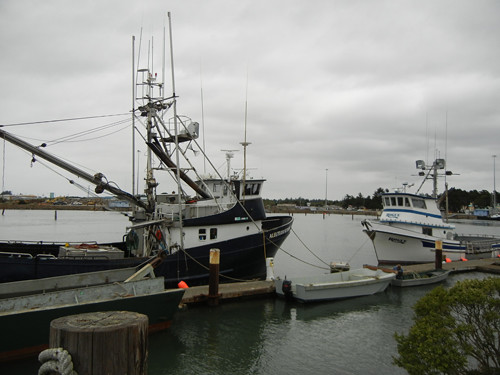 Harbor, Crescent City _ 6812