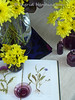 Yellow Flowers with Violet Vintage (Of Spring and Summer) Tags: flowers stilllife white inspiration flower art texture home nature glass floral leaves vintage garden photography book design leaf purple linen antique interior creative books fabric stems vase antiques cottagestyle vases fabrics oldbooks tablecloths shabbychic bulbvases ofspringandsummer prettystems