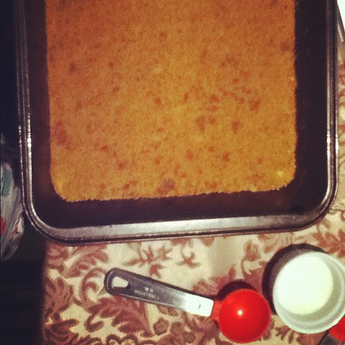 Gingersnap cookie crust ready to go into the oven