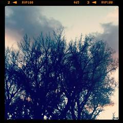 photo-14