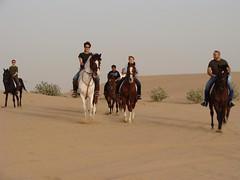 Safari Group Riding