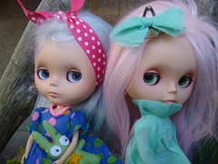 Poppy & Bindi, feeling neglected lately!
