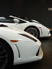 Lamborghini Gallardos (Chance Hales) Tags: white spyder motors lamborghini symbolic gallardo bicolore lp5604 lp5502
